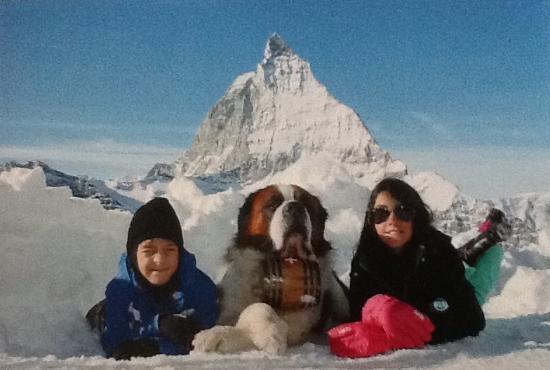 Alpine Exposure : Foto do Matterhorn com o São Bernardo
