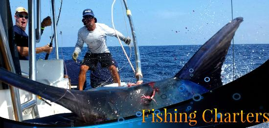 Charly's Sport fishing & Tours