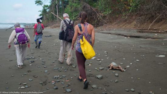 Κόλπος Drake, Κόστα Ρίκα: По диким пляжам тоже очень интересно пройтись. Национальный парк Корковадо, Коста-Рика