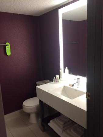 Coast Edmonton Plaza Hotel by APA: Only light in the bathroom is the one around the sink, so it's a bit dark