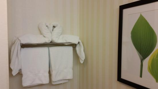 Archdale, Kuzey Carolina: Loved the touch of the bird folded towels, just like a cruise ship.