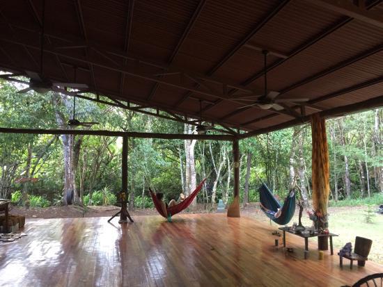 Living Forest: photo0.jpg