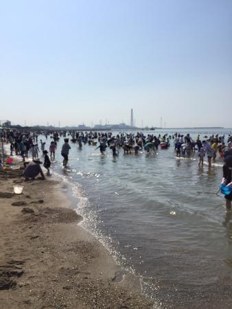 Matogata Beach