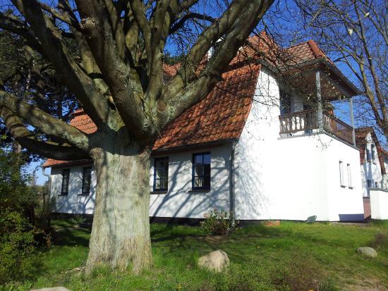 Bilde fra Kloster