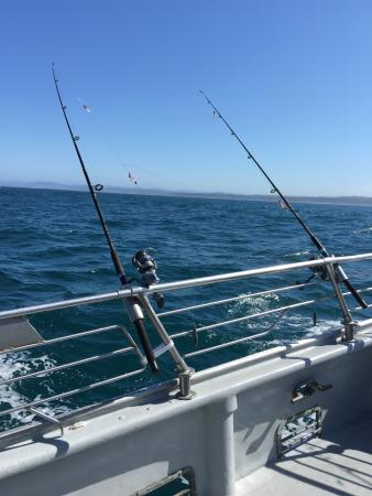 Newport tradewinds all you need to know before you go for Newport oregon fishing charters