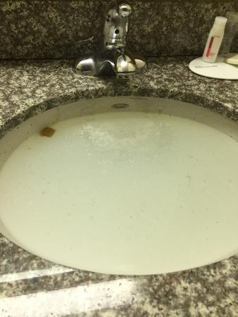 Pikesville, MD: Horrible hotel! Cigarette burns all over the beds. Blood on the shower curtain. Toilet backed up