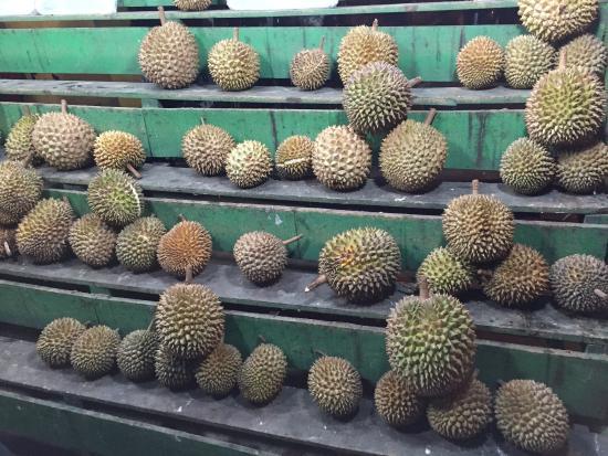 Rumah Durian Radit