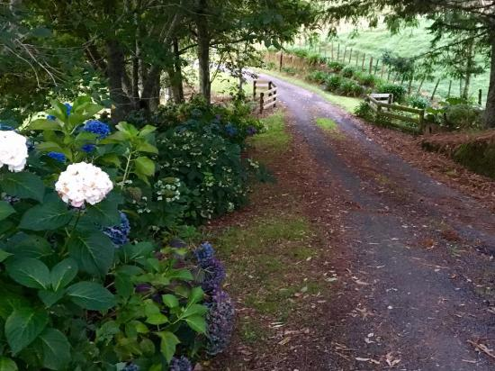 Doolan's Country Retreat: The road up to Doolan's