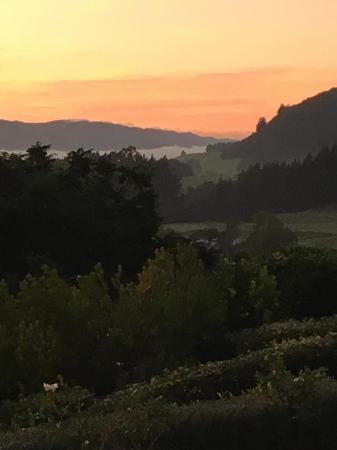 Bilde fra Doolan's Country Retreat