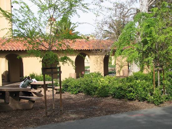 พาโลอัลโต, แคลิฟอร์เนีย: Stanford University
