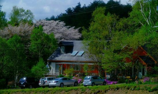 Hara-mura, Japón: 百白花