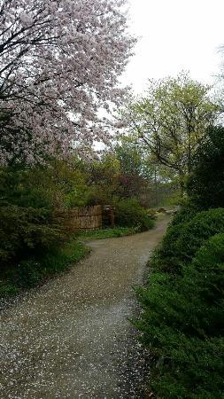 Kicheongsan Botanical Gardens