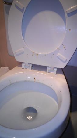 Angel Inn Central: nasty toilet