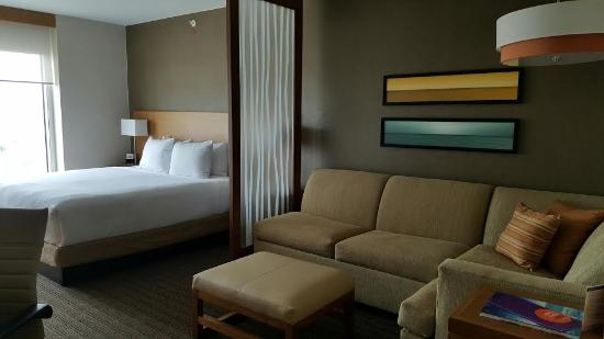 Ocean View King Room Picture Of Hyatt Place Los Cabos San Jose Del Cabo Tripadvisor