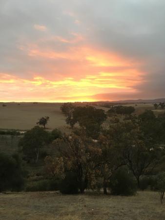 Lyndoch, أستراليا: photo0.jpg