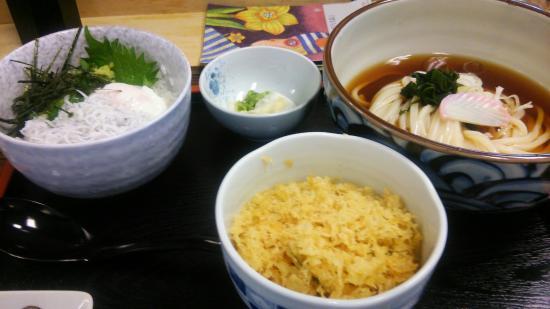 Sanuki Udon-Shi Minami-Kashiwa