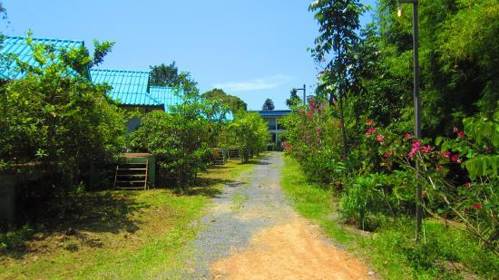 Palida  Resort Foto