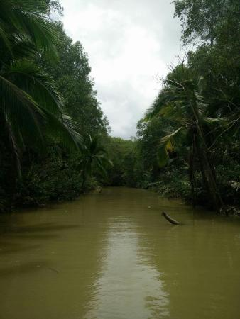 Manuel Antonio Expeditions: received_10153625967762081_large.jpg