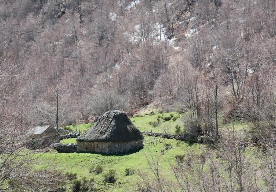 Pola de Somiedo, Spania: Teito