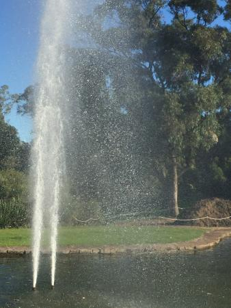 Pioneer Woman's Memorial: 空高く上がる噴水