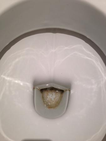 Les Maisons de La Licorne : La mare aux bourres, vétuste : joints douche, cuvette des WC sale, radiateur d'appoint HS, fenêt