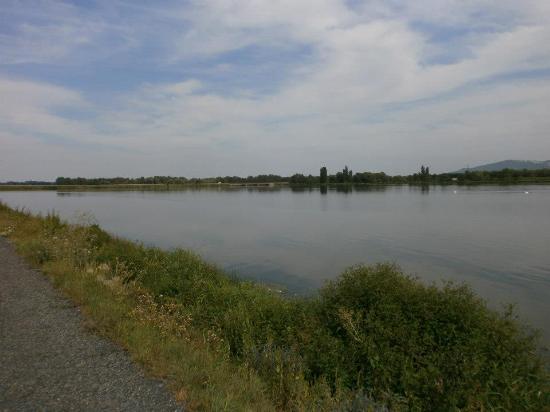 Pasohlavky, Czech Republic: Lovely walk around the lake