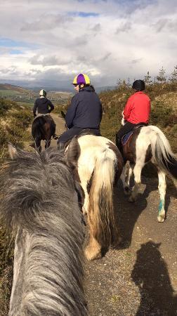 Best horsie holiday !!