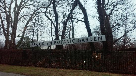 Brooklyn Botanic Garden Photo