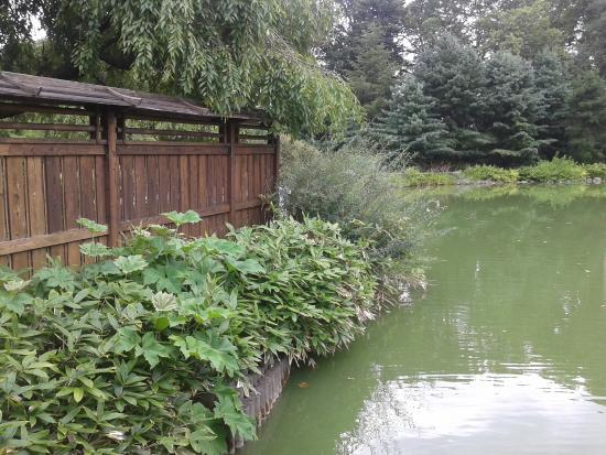 Brooklyn Botanic Garden Photo