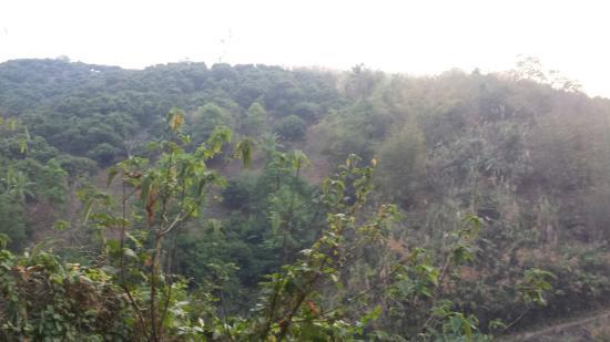 Akha Hill House : The views....