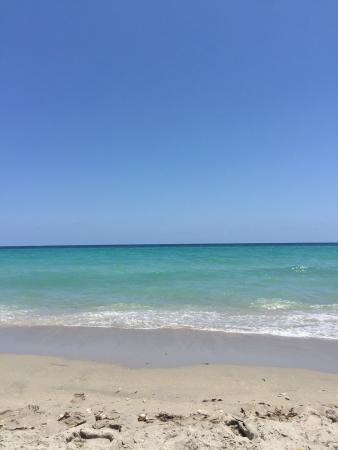 The Marlin Beachside Hotel: photo2.jpg