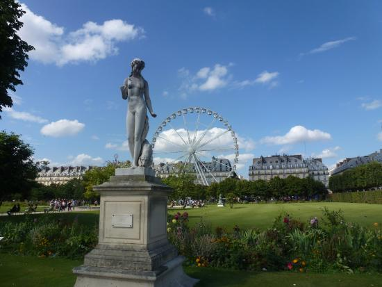 Jardin des tuileries picture of jardin des tuileries for Tuileries jardin