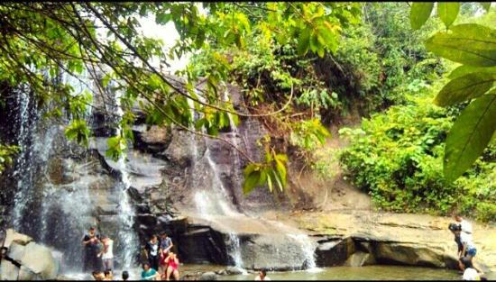 Bambu River Guesthouse Tangkahan: mtf_ceDmL_2208_large.jpg