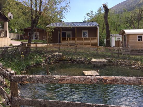 Camping la Ferme de Castellane: photo0.jpg
