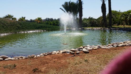 Oulad Teima, Fas: 20160507_152602_large.jpg
