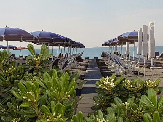 Ristorante Bagno San Marco Fiumaretta : Ganz ok bagno ivana fiumaretta reisebewertungen tripadvisor