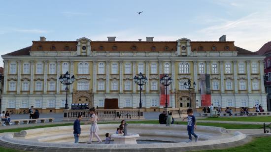 Muzeul de Arta: Esterni