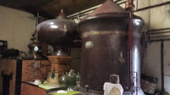 Jarnac Champagne, ฝรั่งเศส: Laurent est tombé tout petit dans le chaudron magique