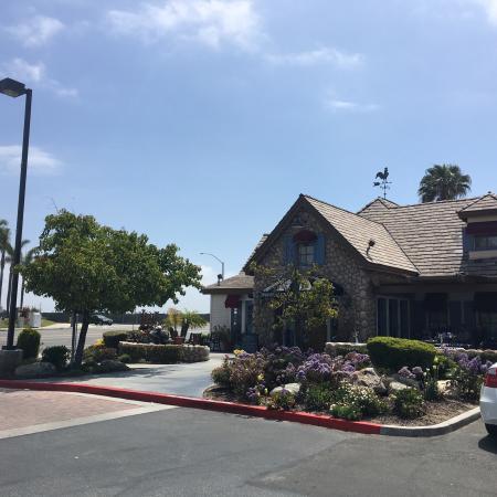 Mimi S Cafe Long Beach Ca