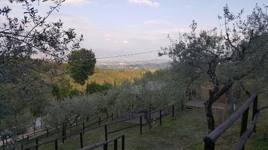 Cantalupo, Włochy: 20160506_185754_large.jpg