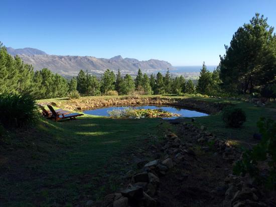 Sir Lowry's Pass, แอฟริกาใต้: photo5.jpg