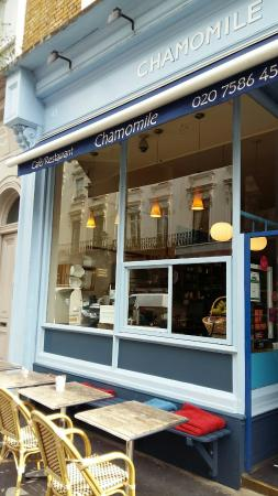 Chamomile Cafe & Restaurant