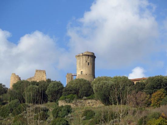 Velia Ruins: Вид на руины со стороны современного города