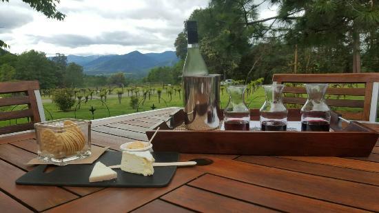 Wooldridge Creek Winery and Vineyard : Wine + cheese tasting