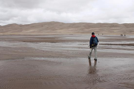 Great Sand Dunes National Park & Preserve, Κολοράντο: The creek is WIDE and shallow, and you cross it before you get to the dunes