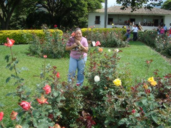 Jardines Exteriores - Picture of Hacienda El Paraiso, El Cerrito ...