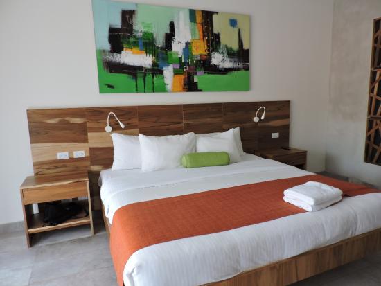 Hotel Villas Playa Samara Image