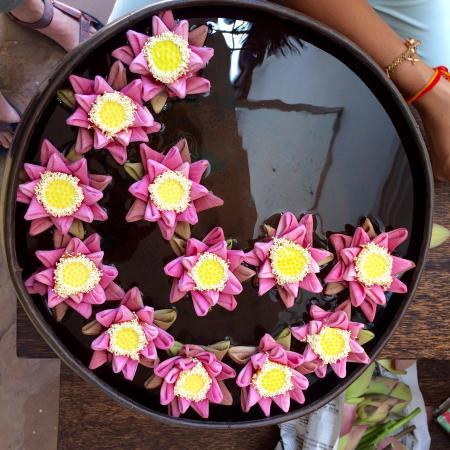 Rambutan Resort - Siem Reap: Decorative Lotus flowers at reception... a nice touch.