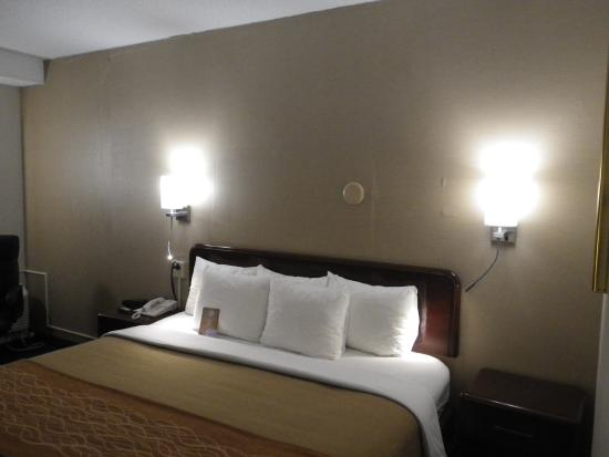 Comfort Inn Middletown: Bed & Wall