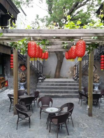 Hill Lily Courtyard : 20160502_082850_large.jpg